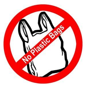 Say no to plastic bags essay in hindi