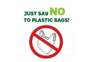 Why Not to Use Plastic Bags - Term Paper